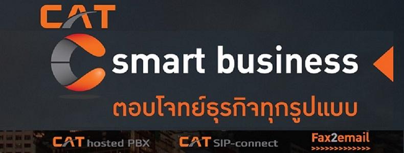 C smart business
