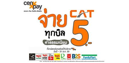 CAT provided channel pay for telecommunications services through CEN PAY